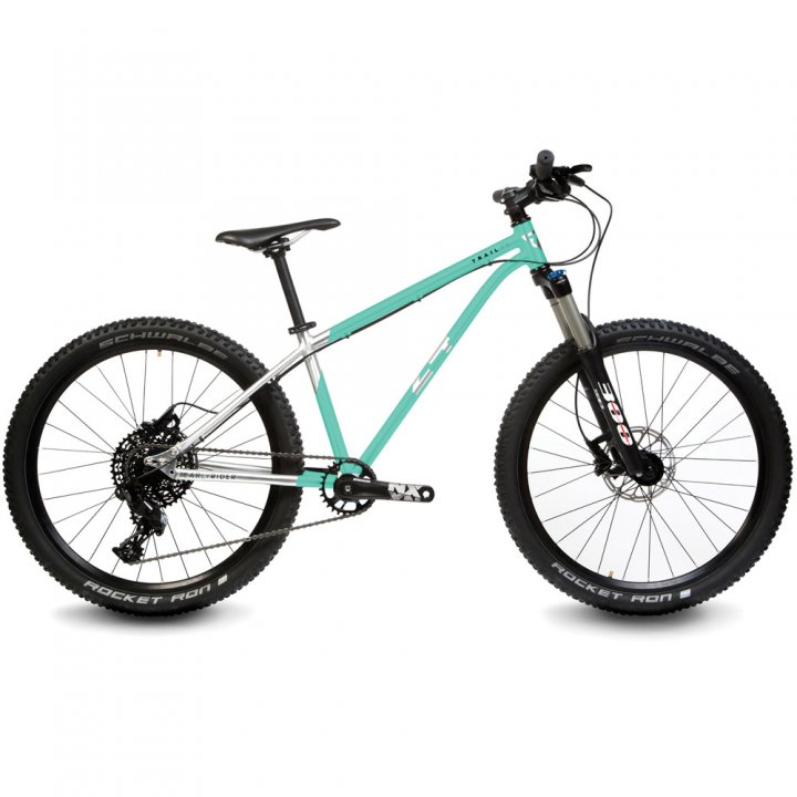 """Early Rider TRAIL 24"""" HARDTAIL"""