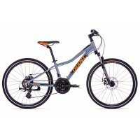 Giant XtC Jr 1 Disc 24 silver 2019