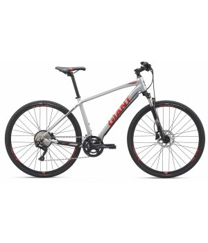 Giant Roam 1 Disc silver 2019