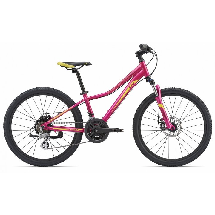 Giant Enchant 1 24 Disc pink 2019